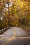 Estrada secundária real através das madeiras foto de stock royalty free