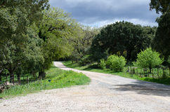 Estrada secundária rural Imagem de Stock
