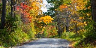 Estrada secundária traseira no outono Fotografia de Stock Royalty Free