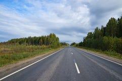Estrada secundária vazia que passa através de uma floresta foto de stock royalty free