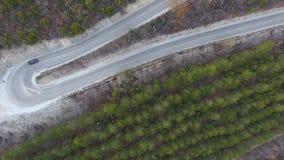 Estrada serpentina da montanha através da floresta filme