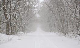 Estrada Snow-covered na floresta Imagem de Stock Royalty Free