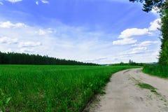 A estrada sob o céu fino Foto de Stock Royalty Free