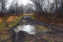 Estrada suja com poça Foto de Stock
