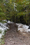 Estrada suja nas montanhas Imagens de Stock Royalty Free