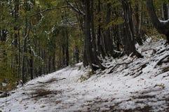 Estrada suja nas montanhas Fotos de Stock