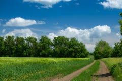 Estrada ? terra no campo wheaten e no nebuloso bonito Paisagem da mola fotografia de stock