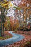 Estrada Twisty do outono Foto de Stock Royalty Free
