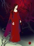 Estrada a uma bruxa ilustração royalty free