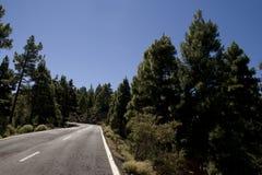Estrada vazia Foto de Stock Royalty Free