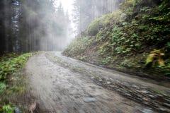 Estrada vazia na floresta nevoenta Fotos de Stock Royalty Free
