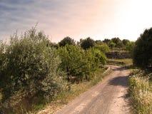 A estrada velha Fotos de Stock