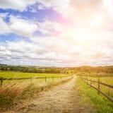 Estrada velha do campo Foto de Stock
