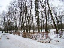 Estrada velha do parque no inverno Imagens de Stock Royalty Free
