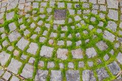 Estrada velha do tijolo com musgo verde foto de stock royalty free