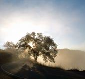 A estrada ventosa adiante Imagem de Stock