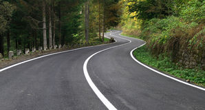 Estrada ventosa na floresta Foto de Stock Royalty Free