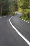 Estrada ventosa na floresta Imagens de Stock Royalty Free