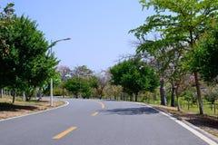 Estrada verde imagem de stock