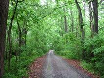 A estrada viajou menos Fotografia de Stock Royalty Free