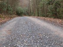 A estrada viajou menos Fotos de Stock