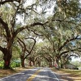 Estradas de Florida fotos de stock royalty free