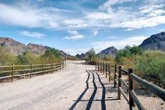 Estradas do deserto Imagens de Stock Royalty Free