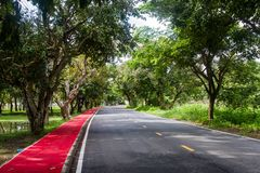 Estradas e árvores no parque, assim como o fundo imagens de stock royalty free