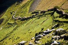 Estradas em Tibet Imagens de Stock Royalty Free