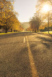 Estradas Nova Zelândia do outono Imagens de Stock Royalty Free