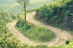 Estradas torcidas Fotografia de Stock
