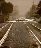 Estradas transversaas nas trilhas do trem Fotografia de Stock