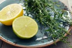 Estragon mit Zitrone und Kalk Stockfotos