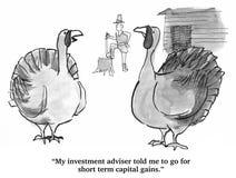 Estratégia de investimento de Turquia da ação de graças Fotografia de Stock