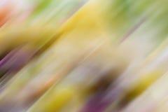 Estratto completo vago di frutti di colore Immagini Stock