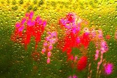 Estratto del fiore Immagini Stock Libere da Diritti