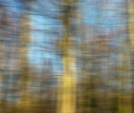 Estratto del fondo della foresta Immagini Stock