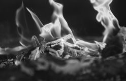 Estratto del fuoco   Immagini Stock