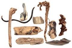 Estratto del legname galleggiante Fotografie Stock