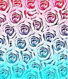 Estratto del modello di struttura di Rosa nel rosa ed in blu royalty illustrazione gratis