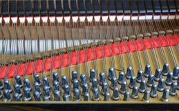 Estratto del pianoforte a coda che caratterizza i perni ed il feltro di sintonia dell'ammortizzatore Fotografia Stock Libera da Diritti