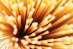 Estratto del primo piano del modello degli spaghetti Immagine Stock