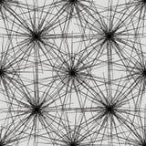 Estratto del reticolo Fotografie Stock