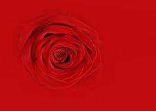 Estratto della rosa di colore rosso Fotografia Stock Libera da Diritti
