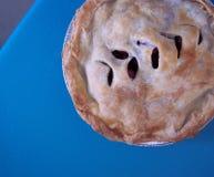 Estratto della torta della frutta Fotografie Stock
