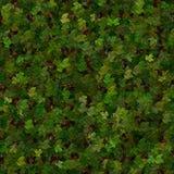 Estratto delle foglie verdi Fotografie Stock