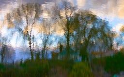 Estratto delle nubi e dell'erba degli alberi Immagini Stock Libere da Diritti