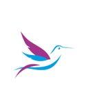 Estratto di assicurazione in caso di morte dei dirigenti dell'estratto 3 del colibrì Immagini Stock