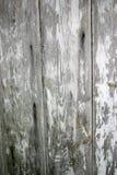 Estratto di legno Fotografia Stock