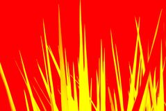 Estratto di permesso dell'yucca Fotografia Stock
